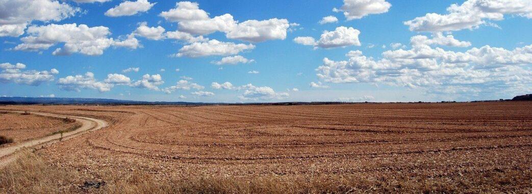 Від сьогодні в Україні розпочався продаж сільськогосподарської землі