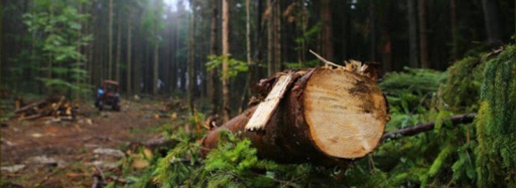 «Хто за це має відповісти?»: старосамбірський «Галсільліс» заборгував громадам понад 2 мільйони гривень