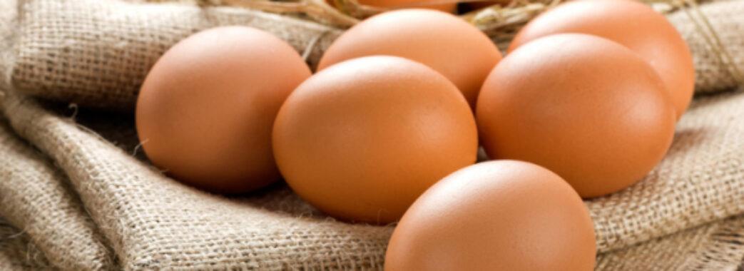40 гривень за десяток: в Україні дорожчають яйця