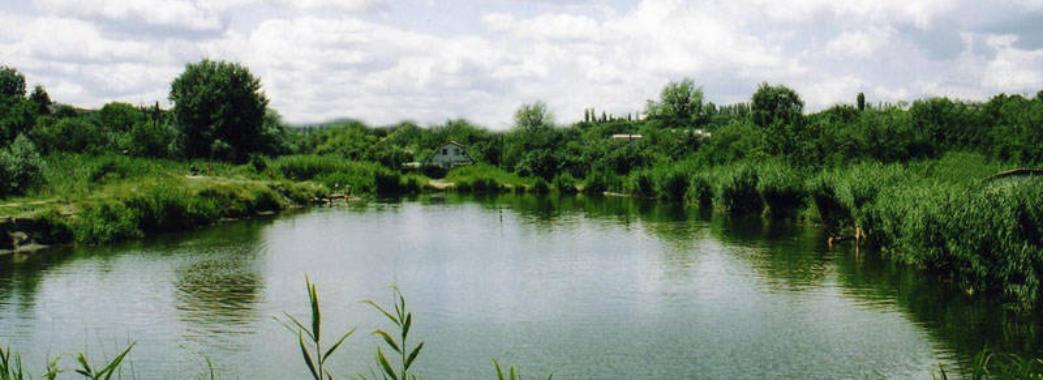 Двоє потопельників за два дні: на Золочівщині у воді загинули молоді чоловіки