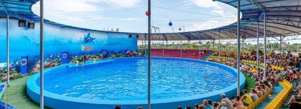 Дітей із Самбірщини, що мають складні життєві історії, запрошують безкоштовно відвідати дельфінарій